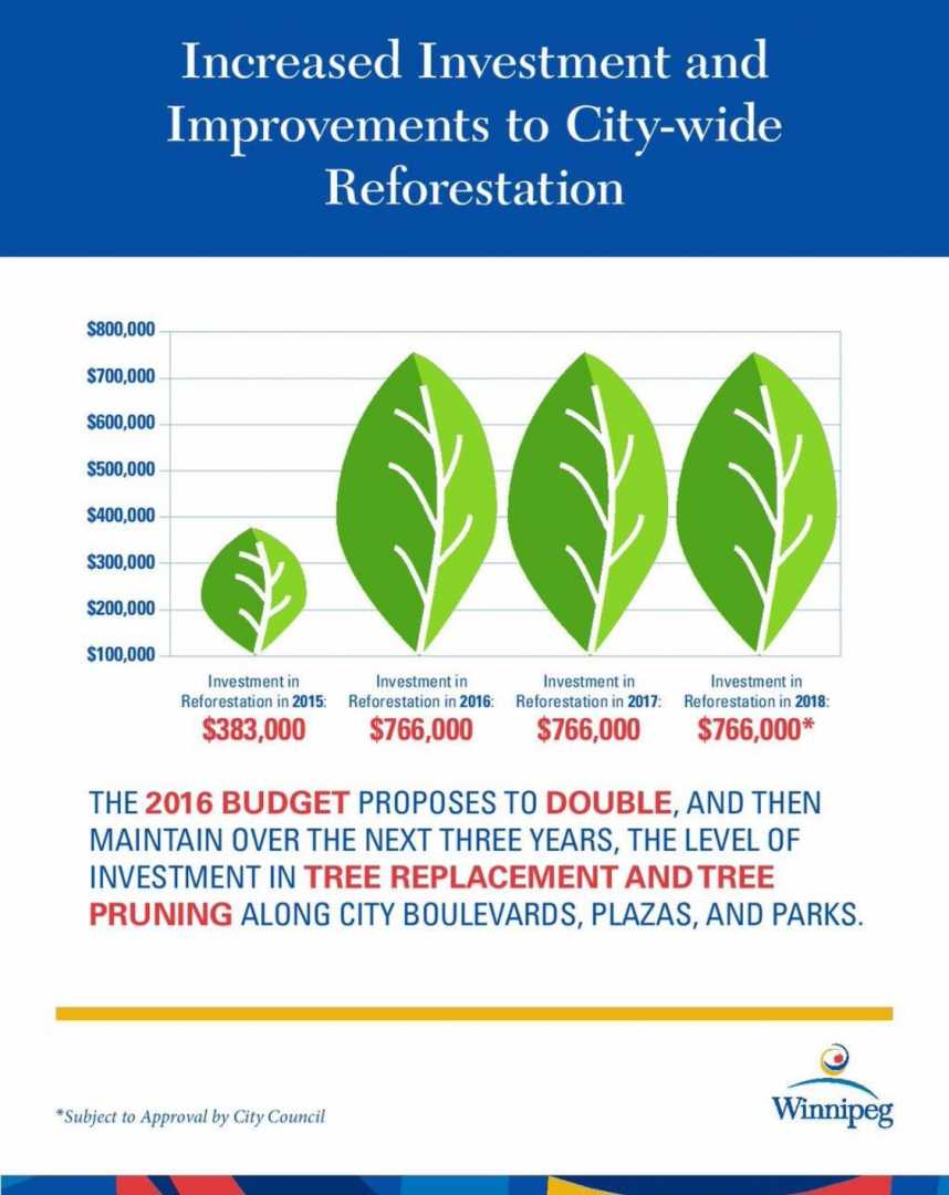 Increased investment in city-wide reforestation