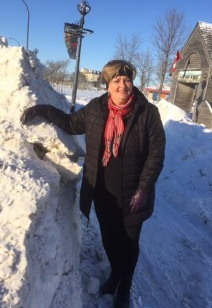 2017 City-Ward Priorities:  Councillor Lukes