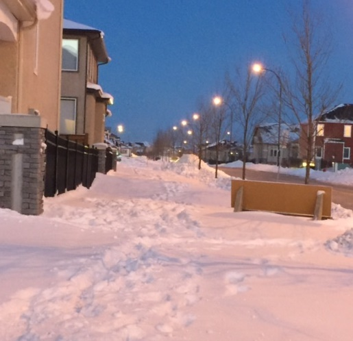 Public Works Committee Punts Sidewalk/Pathway Snow Removal Report – Timeframe Now In Limbo