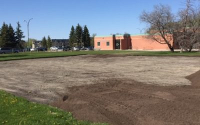 Eight Community Garden Plots Available By Margaret Grant Pool