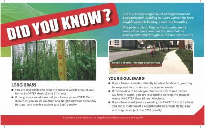 Did You Know – Neighbourhood Liveability By-Laws
