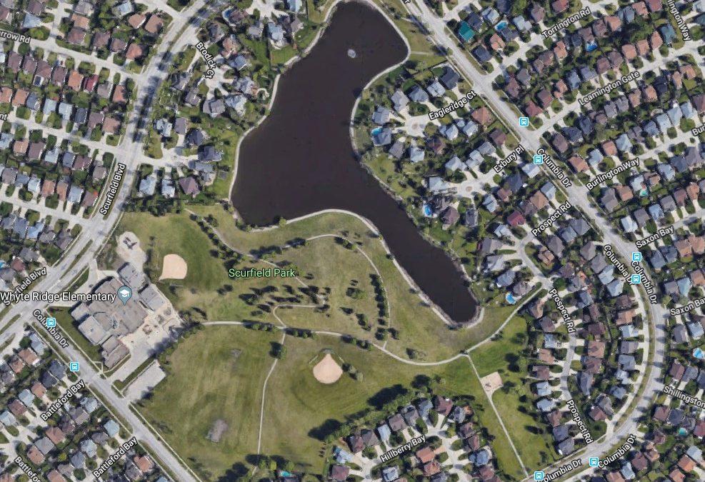 Scurfield Park Upgrades