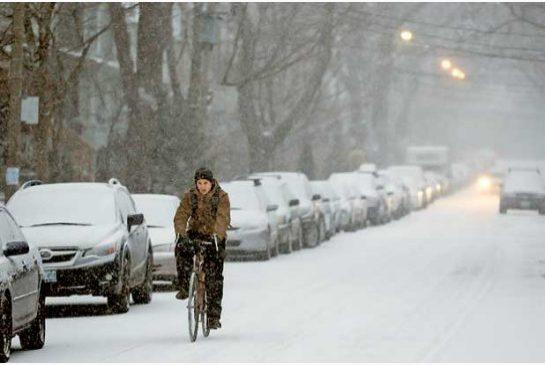 Janice Lukes Eyes Review for Sidewalk & Bike Lane Snow Removal
