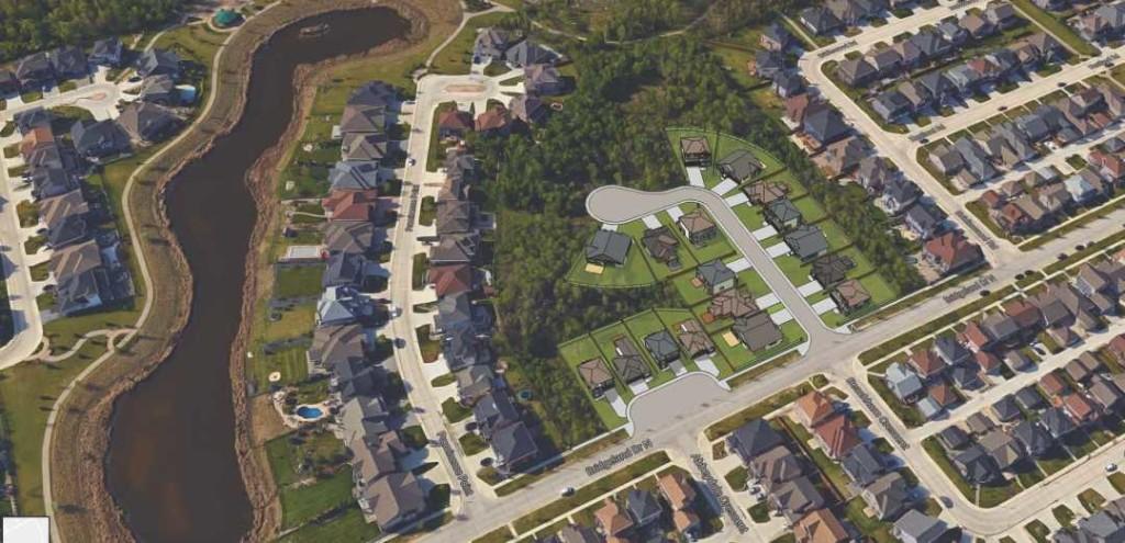 Bridgwater Forest School Site Digital Plan (Sept 2017)