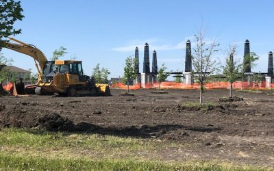 Replacement of Sod – Bridgwater Lakes & Bridgwater Forest