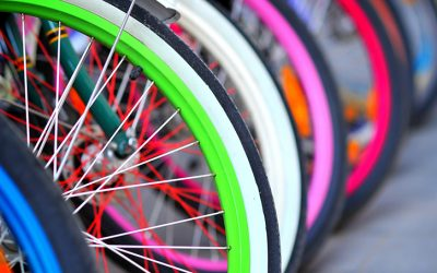 Exploring Winnipeg by Bike