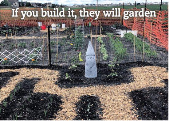 South Pointe Community Garden